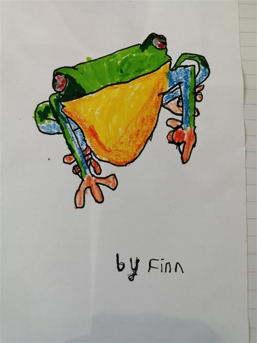 Finlay's fabulous red-eyed frog!